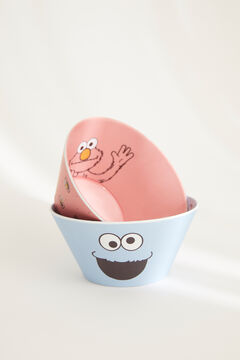 Womensecret Set of blue and pink Sesame Street bowls. white